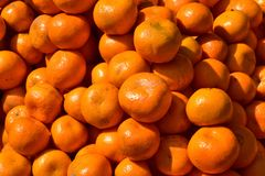A heap of oranges. Close up shot in direct sunlight royalty free stock photography