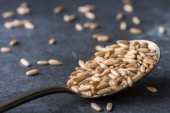 Oat Groats on a spoon royalty free stock photography