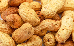 Heap Peanuts Stock Image