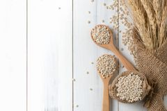 Heap of pearl barley on wood spoon with ear of barley. On white wood background, vegetarian food, top view and copy space Royalty Free Stock Images