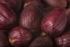Heap of peeled hazelnuts Stock Photos