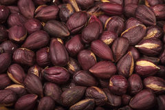 Heap of peeled hazelnuts Royalty Free Stock Images