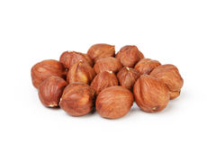 Heap of peeled hazelnuts isolated on white Stock Photography