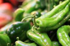 Heap of peppers Royalty Free Stock Photos