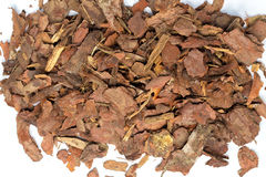 Heap of pine bark Stock Image