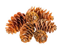 Heap pine cones is isolated on white background Stock Photo