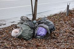 A pile of plastic bags with rubbish in the fallen leaves near the road. Heap of plastic bags with rubbish in brown fallen leaves near the road royalty free stock photography
