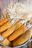 Heap Of Plastic Corns. Royalty Free Stock Images