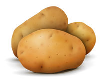 Heap of potato tubers close up Royalty Free Stock Photo