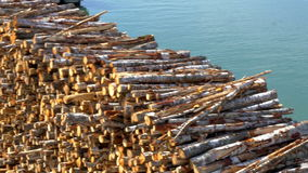 Heap of pulpwood for fire on display on the harbour of Estonia GH4 4K stock video