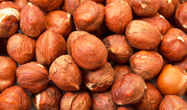 Heap Purified Cobnuts Royalty Free Stock Image