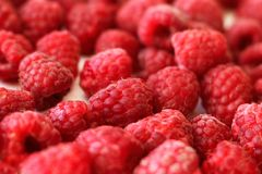 Heap of raspberries full frame background, close-up. Heap of raspberries full frame used as  background, close-up Royalty Free Stock Photo