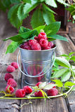 Heap of raspberry in bucket. Fresh raspberries on wooden table Royalty Free Stock Photo