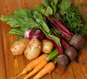 Heap of Raw Organic Vegetables Stock Images