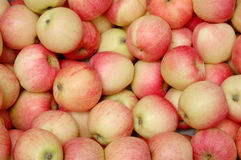 Heap of red apples Stock Photo