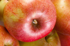 Heap of red apples. Royalty Free Stock Photography