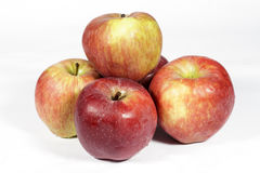 Heap of red apples on white Stock Photography