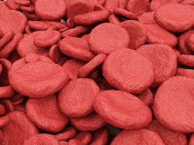 Heap of Red Blood Cells Royalty Free Stock Image