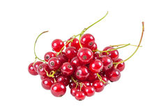 Heap of red currant isolated on white background Royalty Free Stock Images
