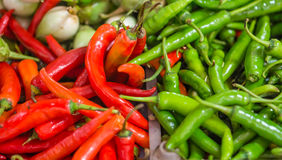 Heap of red and green Cayenne pepper (Capsicum annuum) Royalty Free Stock Images