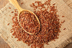 Heap of red rice Stock Photography