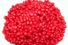 Heap of red and ripe berries of schisandra isolated Stock Images