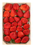 Heap red strawberries in the box Royalty Free Stock Photo