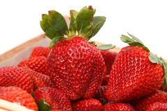 Heap red strawberries in the box Stock Image