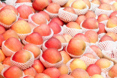 Heap of red and yellow apples Stock Images