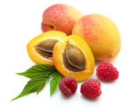 Heap ripe apricot with raspberry Royalty Free Stock Image