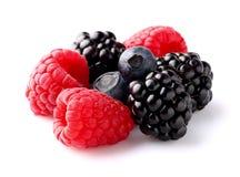 Heap of ripe berry Royalty Free Stock Photos