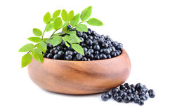 Heap of ripe bilberries Royalty Free Stock Photo
