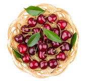 Heap of ripe cherries with leaves in basket. Heap of ripe cherries with leaves in wicker basket isolated on white background, top view Stock Photography