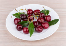 Heap of ripe cherries with leaves in white glass plat. E on table Stock Image