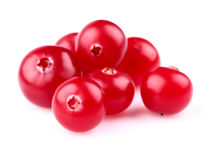 Heap of ripe cranberry Stock Photos