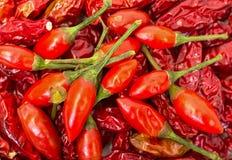 Heap of Ripe and Dried Red Peppers Piri-Piri Stock Photo