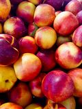 Heap of Ripe Organic Homegrown Nectarines at Farmers Market. Top View. Harvest Autumn Fall. Royalty Free Stock Photos
