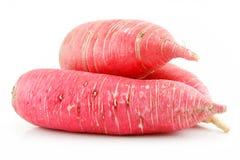 Heap of Ripe Red Radish Isolated on White Stock Image