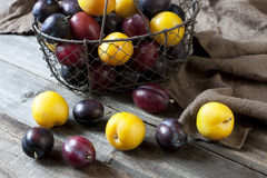 Heap of Ripe Sweet colorful Plums. Some plums in a basket on  wooden surface Royalty Free Stock Photography