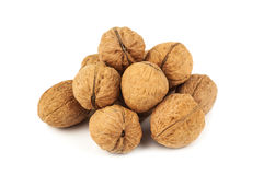 Heap of ripe walnuts Royalty Free Stock Image