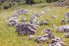Heap of rocks Stock Image