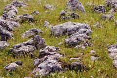Heap of rocks. Over green field Royalty Free Stock Photography