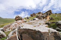 Heap of rocks in the valley in Caucasus mountains Stock Photo