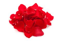 Heap of rose petals Royalty Free Stock Images