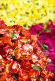 Heap roses. Heap red roses texture (focus on first heap Royalty Free Stock Photos
