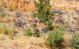 Heap of the rubbish on timber glade Royalty Free Stock Image