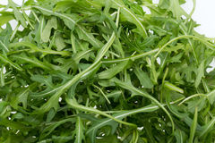 Heap of ruccola leaves. Close up of Heap of ruccola leaves royalty free stock image