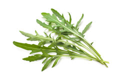 Heap of ruccola leaves Stock Images