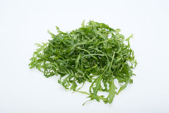 Heap of ruccola leaves Royalty Free Stock Images