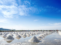 Heap of salt in the farm made of ocean water Royalty Free Stock Image